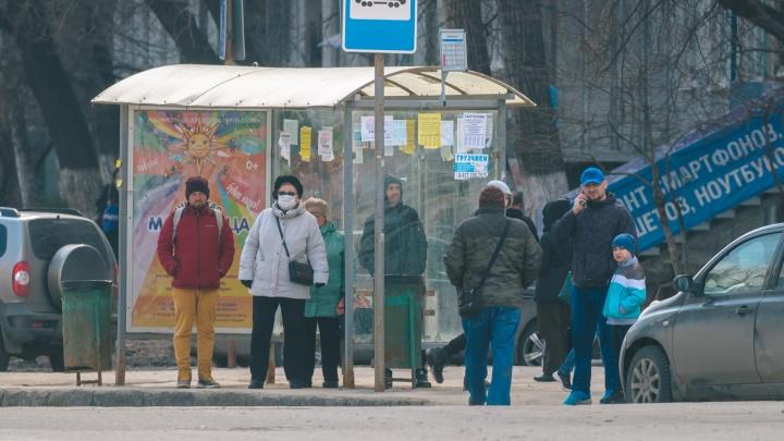 В Самаре увеличат количество общественного транспорта