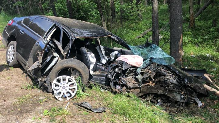 «Водитель чудом выжил»: на Прусовских карьерах автомобиль снес несколько сосен