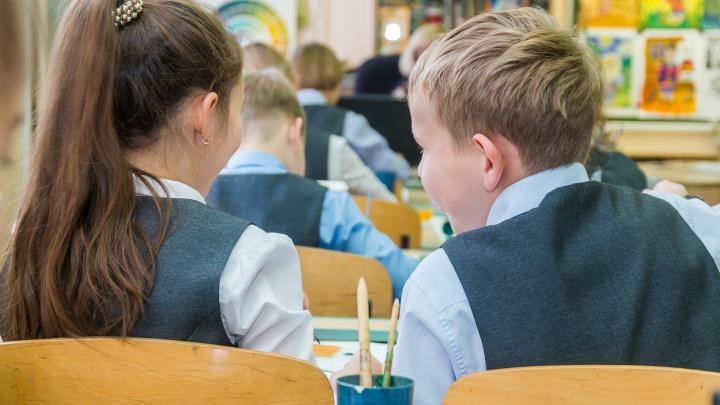 В Минобре Самарской области рассказали, когда введут дистанционное обучение в школах