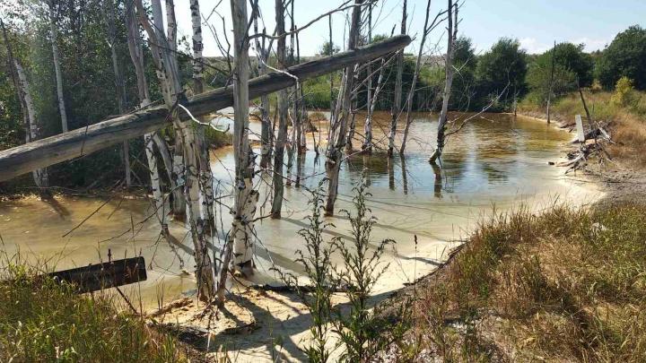 Ущерб реке и почве из-за загрязнения в Березниках оценили в 24 миллиона рублей