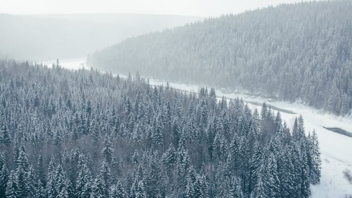 В новогодние праздники в Прикамье пройдет экскурсия по местам съемок сериала «Территория»