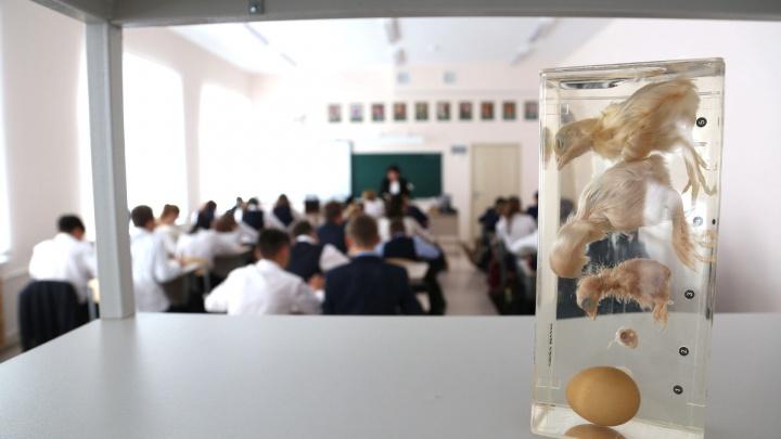 В Башкирии 139 школьников заболели коронавирусом