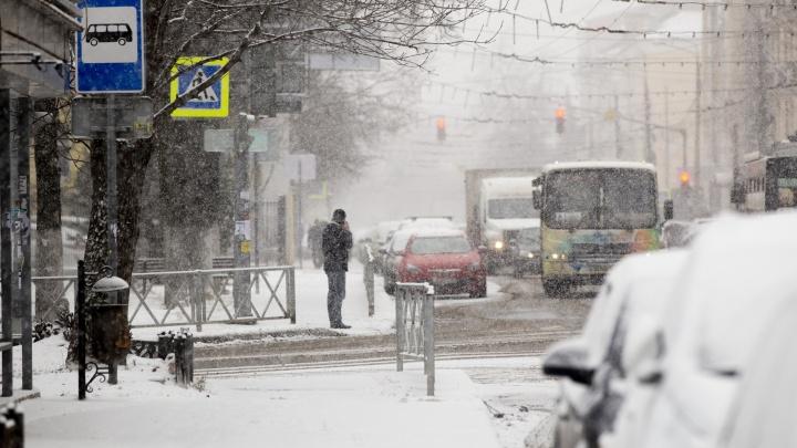 «Самый сильный снегопад»: Ярославль перед Новым годом накроет мощный циклон