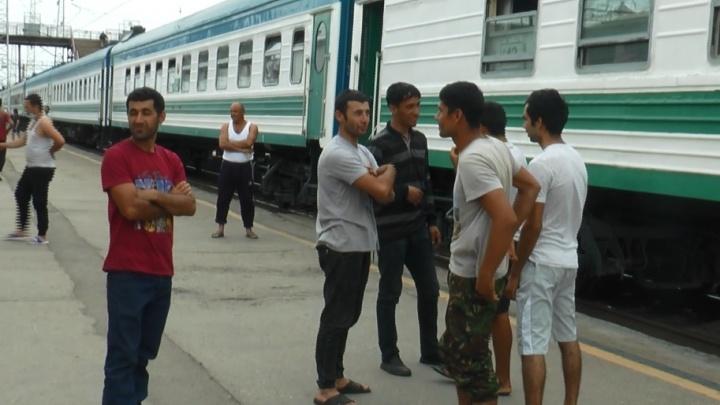 «Их всё больше и больше»: из Кинеля в Узбекистан отправили 918 мигрантов