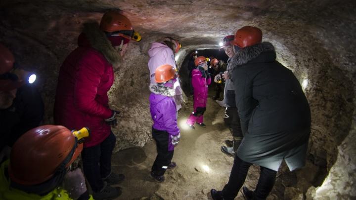 Где спит летучая мышь и до сих пор стоит новогодняя елка: фоторепортаж из пинежских пещер