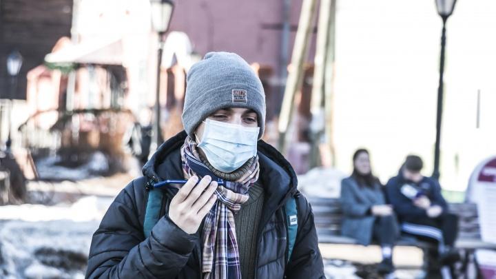 За сутки в Архангельской области выявили 219 новых случаев коронавируса