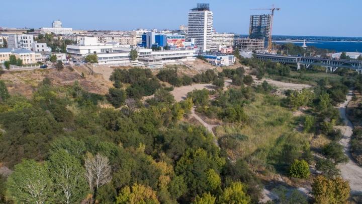 Аквапарк, царицынская крепость и экотропы: какое будущее урбанисты предлагают пойме реки Царица