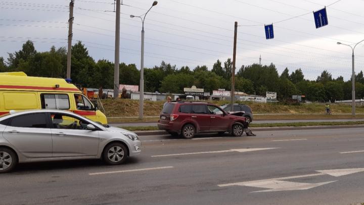В Свердловском районе автомобиль столкнулся с пони, животное погибло