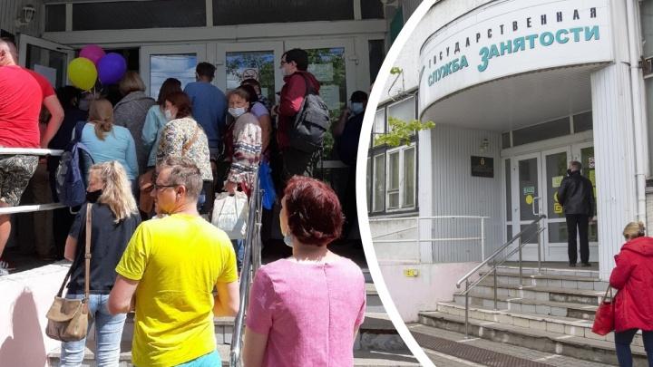 «Интернетом пользоваться не научились?» В Ярославле у центра занятости выстроилась огромная очередь