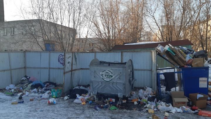 После проверки прокуратуры в ООО «САХ» в Архангельске выплатили сотрудникам долги по зарплате