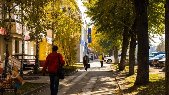 Очень короткое бабье лето: синоптики рассказали, когда в Новосибирске снова станет холодно