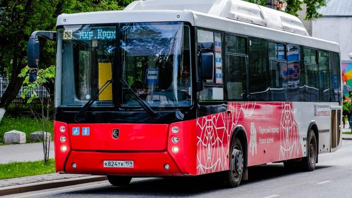 Жители Крохалева и Краснова собрали 1200 подписей за возврат старых маршрутов автобусов