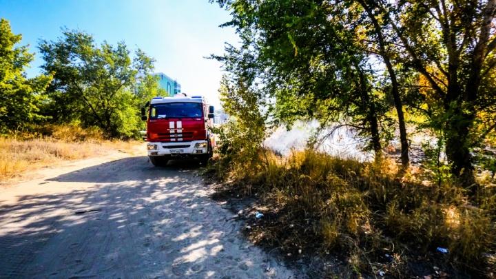 «Пожарные летели, не останавливаясь на светофорах»: в Волгограде вновь горела пойма Царицы