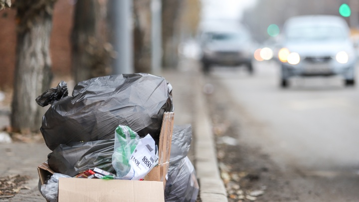 Вывоз мусора подорожает, Саввиди и Вексельберг поделят старый аэропорт: события 29декабря