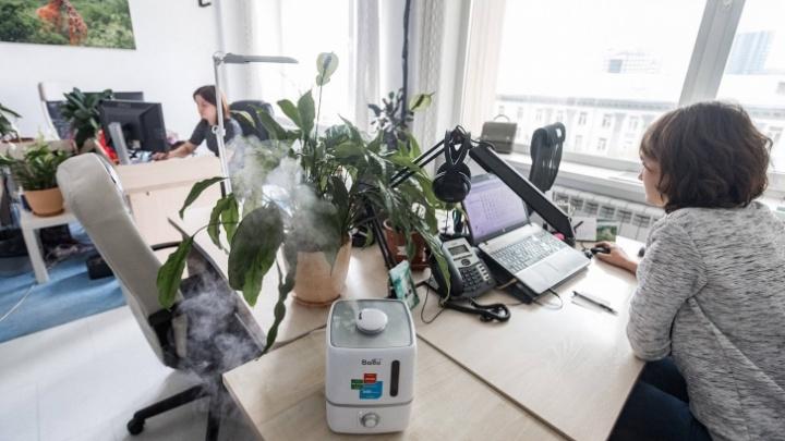 Новосибирские ученые изобрели противовирусное средство, которому нет аналогов в мире