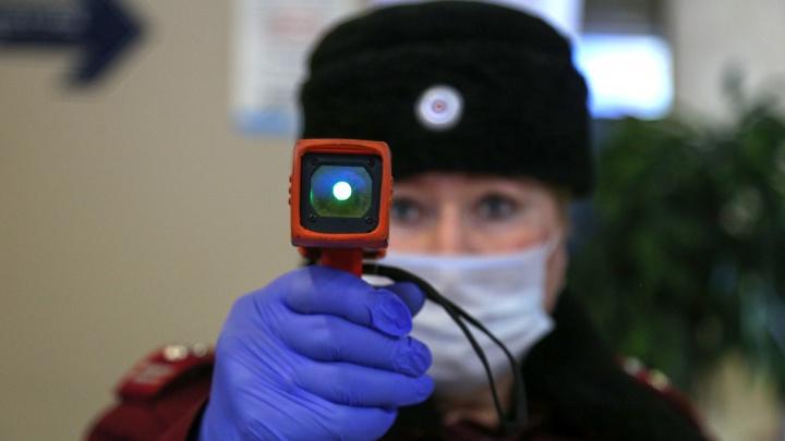 590 человек в Архангельской области находятся под наблюдением в самоизоляции из-за коронавируса