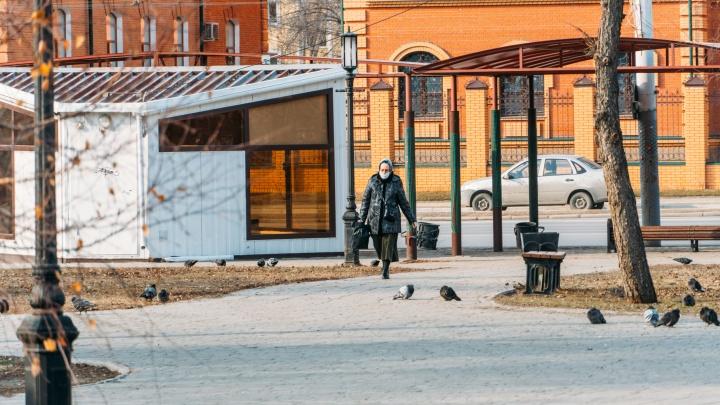 Режим самоизоляции в Омской области продлили до 19 апреля