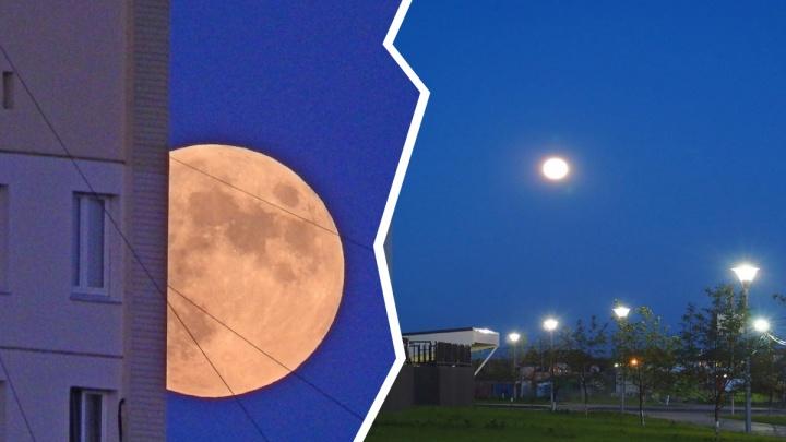 «Земляничная» луна в небе над городом. 10 невероятных кадров полнолуния в Тюмени