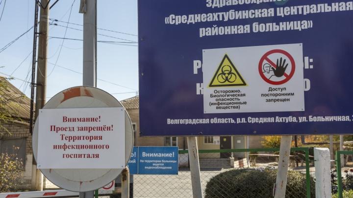 Весь юг без хирургии: в Волгограде и области новые больницы отдали коронавирусу