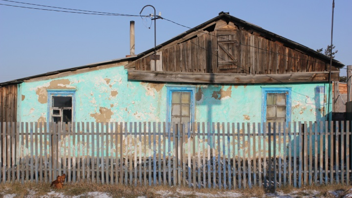 В Оконешниковском районе пьяный мужчина избил сожительницу, а затем убил ее пинчера