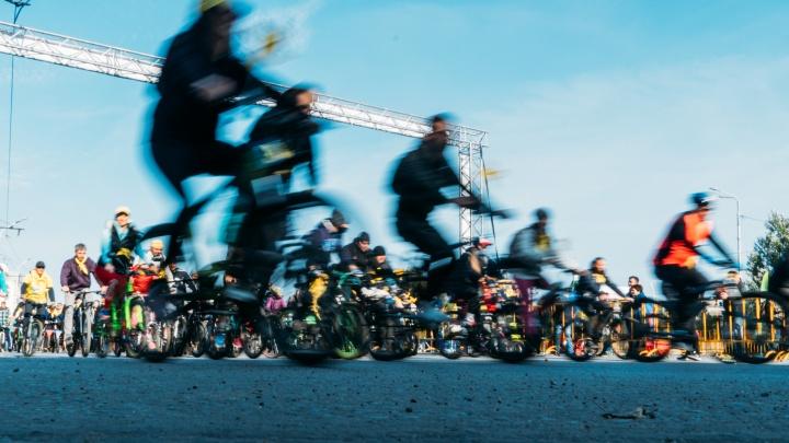 Народные платья, собаки в корзинах и тандем: как прошёл «ВелоОмск-2020»