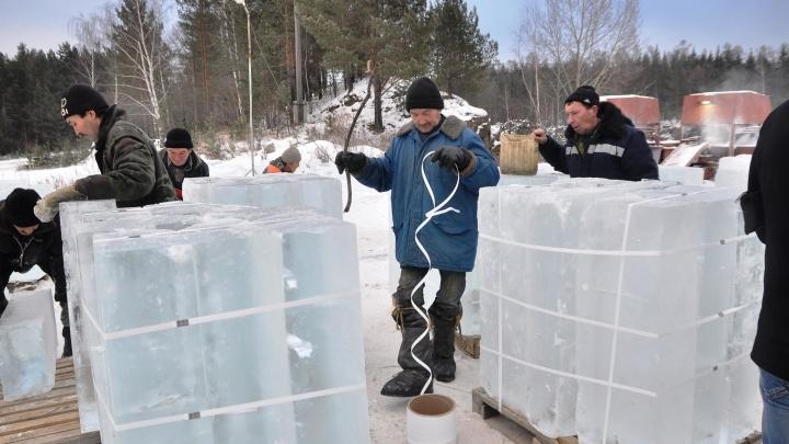 Мэрия Екатеринбурга начала опрос по теме нового ледового городка