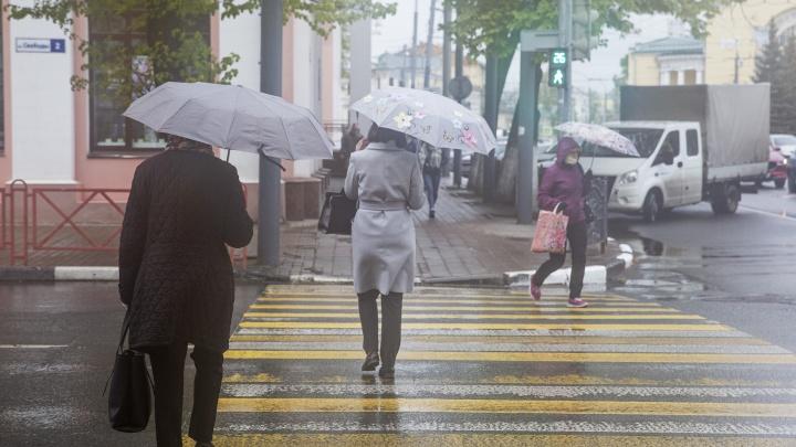 Тёплое лето откладывается: синоптики сообщили о похолодании, дождях и порывистом ветре