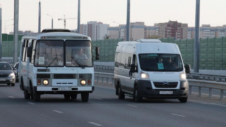 На Фрунзенском мосту заметили общественный транспорт