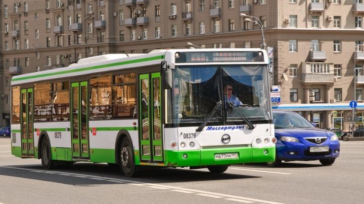 Схватили без разбора: ярославские власти забрали 30 подержанных автобусов из Москвы