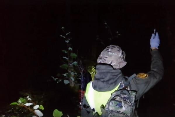 Поиски пропавшей в лесу северодвинки продолжались всю ночь<br>