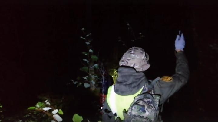«Работали всю ночь — все вымокли»: как в лесу под Северодвинском искали потерявшихся грибников