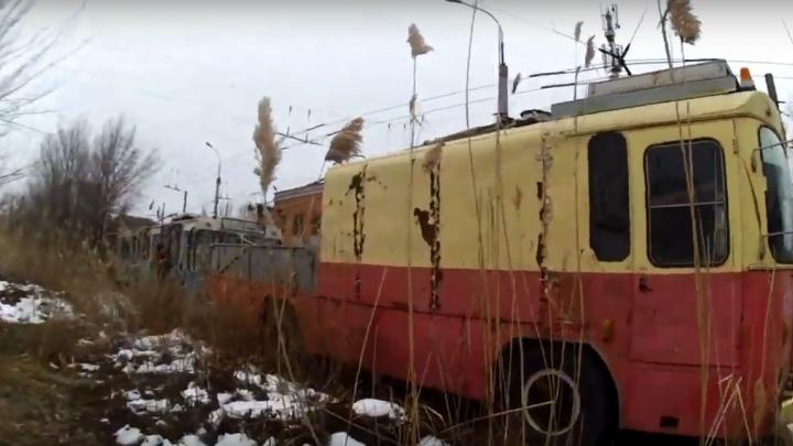 «Когда-то ты новою краской сиял пучеглазый»: сталкеры Волгограда сняли кладбище старых троллейбусов