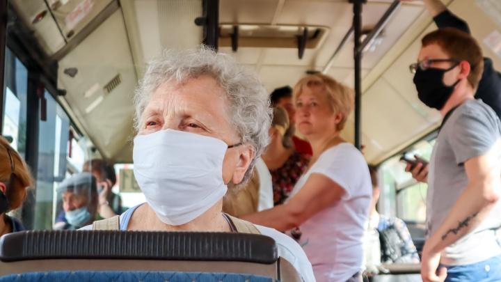 Плюс 146 заражённых в крае, вирус проник ещё в три новых территории