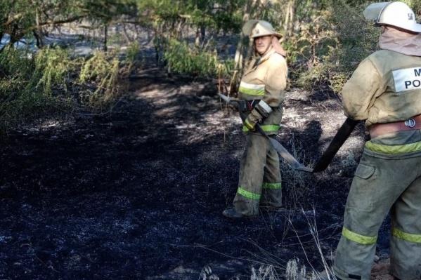 Площадь пожара составила около двух гектаров