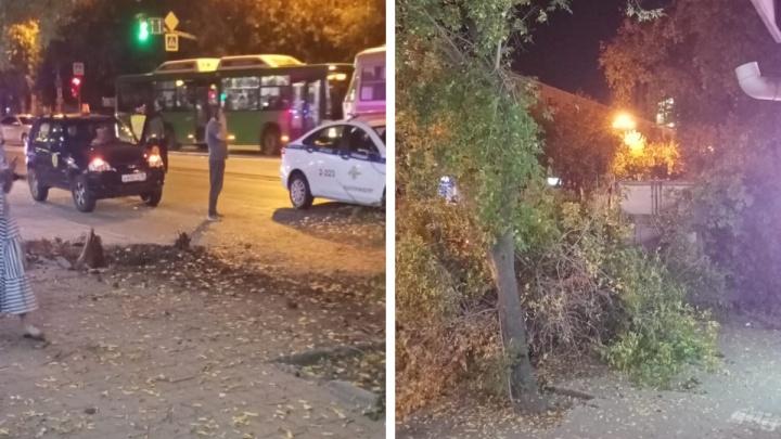 8 Марта перекрыта: в Екатеринбурге грузовик снес несколько деревьев и вылетел на тротуар
