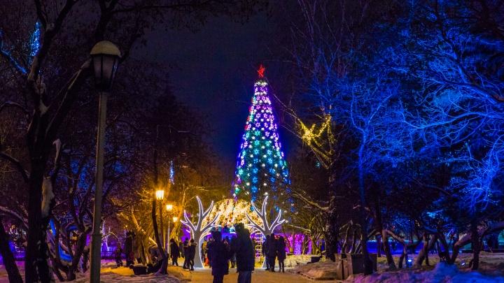 Власти Новосибирска попросили полицию оказать помощь в новогоднюю ночь на площади Ленина