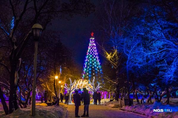 В этом году у елки не будет массовых мероприятий