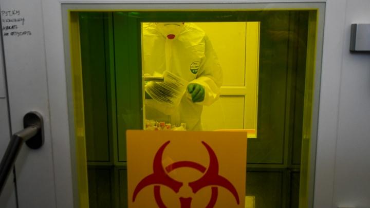 В последние дни в крае регистрируют много смертей от коронавируса. Как это объясняют в Минздраве?