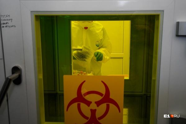 Двое из 11 зараженных скончались от сопутствующих заболеваний, но у всех был подтвержден коронавирус