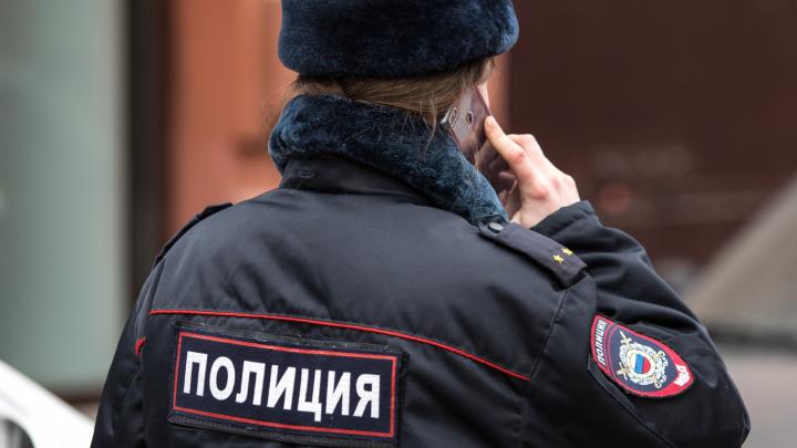 Лжесотрудник полиции украл 4 миллиона рублей у жительницы Каменского района