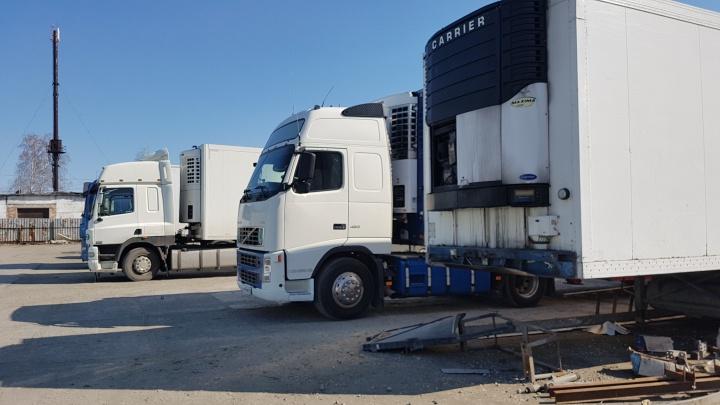 В Зауралье на месяц ограничат движение большегрузов для сохранения дорог