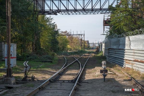 Поезда будут ходить раз в три дня