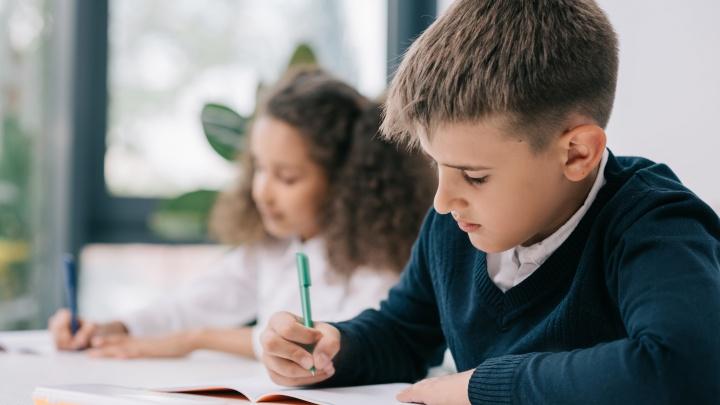 Шаги к успеху: как помочь школьнику стать отличником