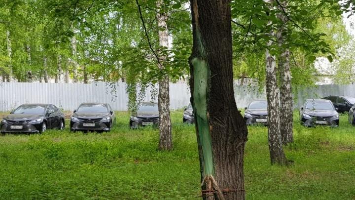 Власти Челябинской области определились с судьбой представительских иномарок, простаивающих в лесу