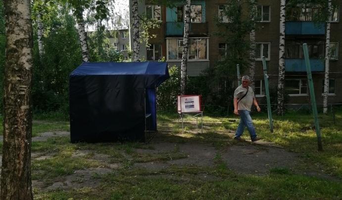 Стало известно, сколько человек уже проголосовало по поправкам в Конституцию в Ярославской области