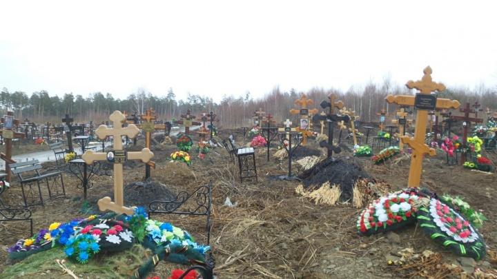 Полиция ищет вандалов, которые подожгли на Лесном кладбище 68 могил