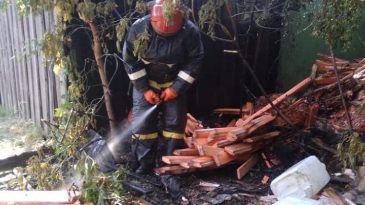«Муж бросился в огонь»: в Новосибирске подожгли приют для бездомных животных