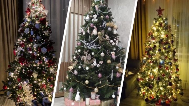 15 самых красивых елок в квартирах новосибирцев: сохраняйте идеи и присылайте свои фото