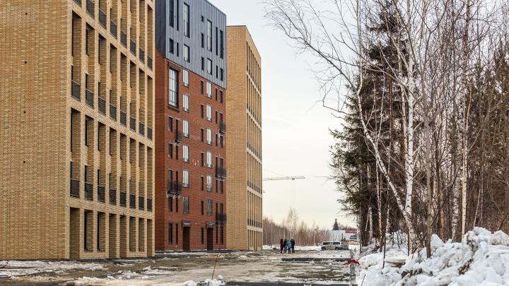 Вау-жильё на окраине: на Родниках достроили необычные дома со скошенными крышами — изучаем плюсы и минусы