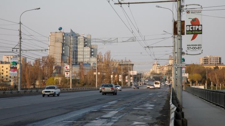 С собой паспорт и уведомление: в Волгоградской области объяснили, как гулять с собакой и выносить мусор
